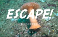 Escape! The Supercut