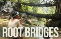 Root Bridges   100 Wonders   Atlas Obscura