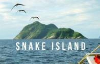 Snake Island | 100 Wonders | Atlas Obscura
