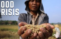 The Impact of El Niño on World Hunger