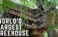 Tour The World's Largest Treehouse