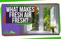 What Makes Fresh Air Fresh?
