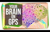 This Is Your Brain on GPS