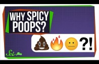 Why Does Spicy Food Burn When You Poop?