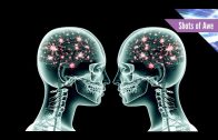 What Is Brain Coupling?