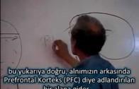 Emotional Intelligence or Behaviorial Control -1-