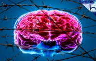 07. Kilitlenmiş Beyin – Locked-Up Brains – Ahmed Hulusi