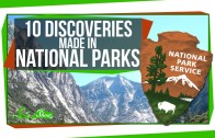 10 Discoveries Made in National Parks