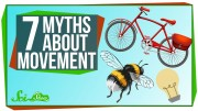 7 Myths About Movement