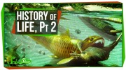 A Brief History of Life: Survival Is Hard