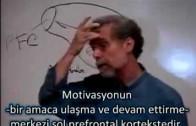 Duygusal Zeka yada Davranışsal Kontrol -2-