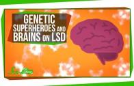 Genetic Superheroes and Brains on LSD