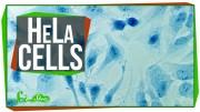 Immortal Cells Turn 96