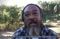 Mooji Baba ile Yürüyüş – Açık Kal (Walk with Mooji Baba – Stay Open)
