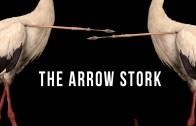 The Arrow Stork   100 Wonders   Atlas Obscura