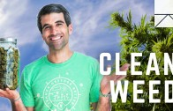 The Man Creating The Whole Foods of Weed