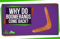 Why Do Boomerangs Come Back?