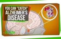 "You Can ""Catch"" Alzheimer's Disease"