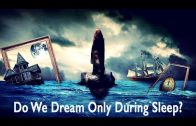 Do We Dream Only During Sleep? by Ahmed Hulusi
