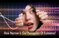 How Narrow Is Our Perception Of Existence? by Ahmed Hulusi